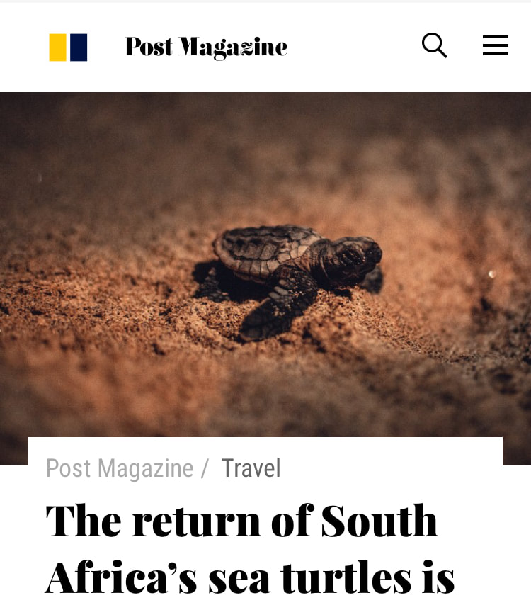 https://www.scmp.com/magazines/post-magazine/travel/article/3077039/return-south-africas-sea-turtles-conservation